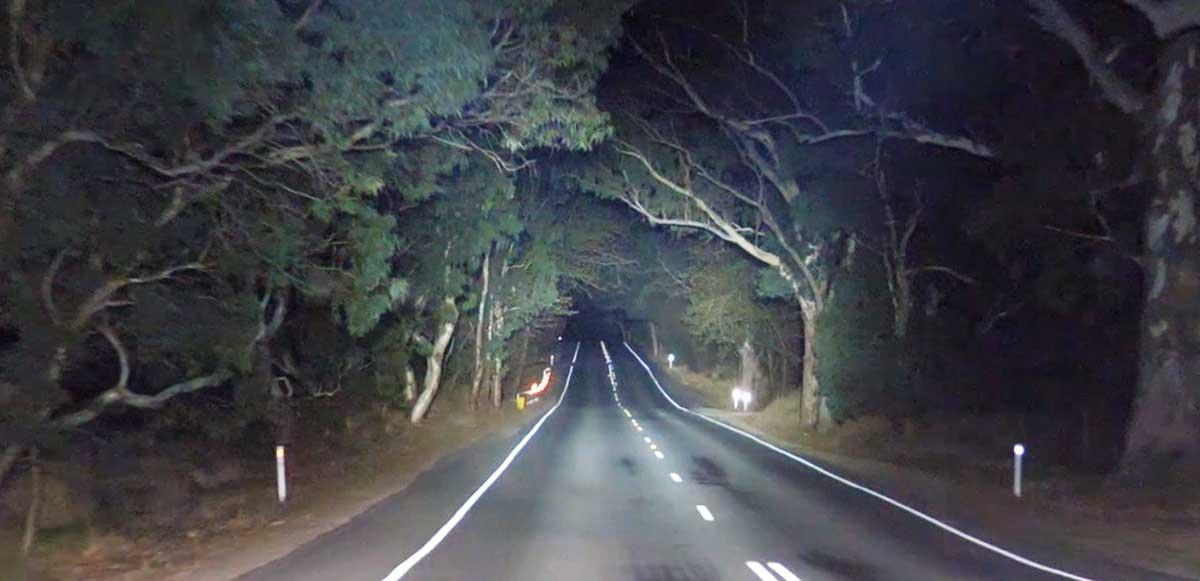VENOM PROFESSIONAL EDITION LED DRIVING LIGHT Beam Pattern